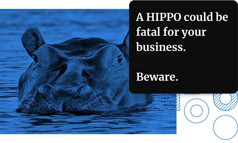a HIPPO (Highest Paid Person's Opinion) could be fatal for your business. Make sure you're making data-driven decisions, and not those based on assumption.